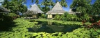Cover FB  Lily Pads and Thatched Huts, Tahiti, French Polynesia