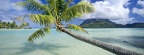 Cover FB  Tropical Escape, Bora Bora, French Polynesia