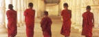Young Buddhist Monks, Cambodia