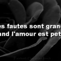 Couverture Citation Amour