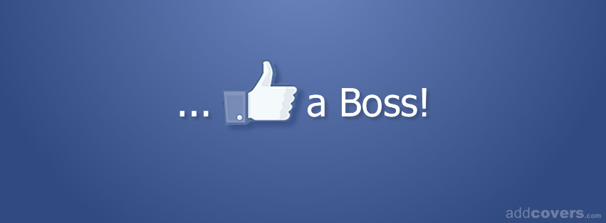 like a boss - couverture facebook.jpg