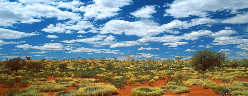 Cover FB  Old Spinifex Rings, Little Sandy Desert, Australia