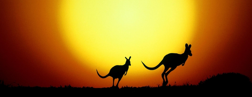 Cover FB  The Kangaroo Hop, Australia