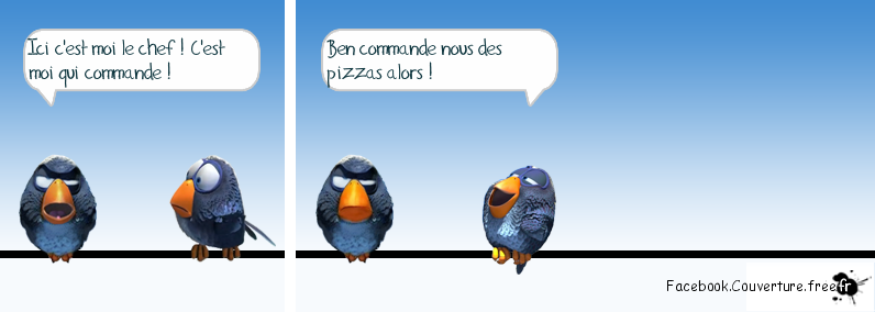 Humour - le chef - Facebook.couverture.png